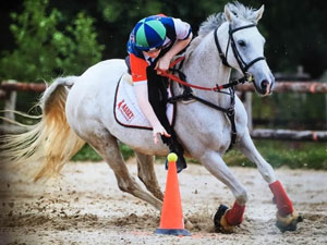 Paddy doing mounted equestrian games